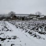 Alexandrovka Village