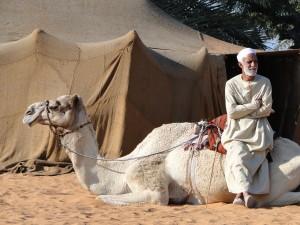 abu dhabi heritage village camel