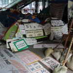 Occupy: Hong Kong