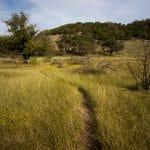 Doeskin Ranch, Near and Dear