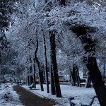 Winter Descends Upon Bishkek