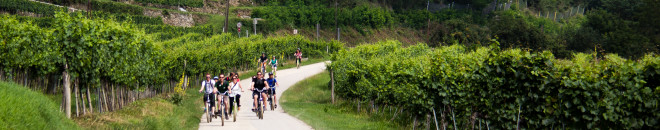 wachau valley bike tour
