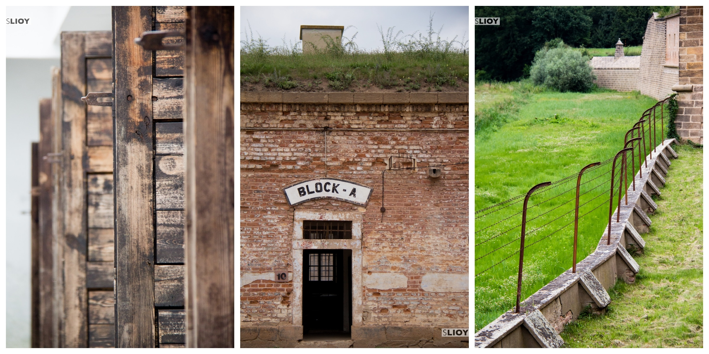 Terezin Collage
